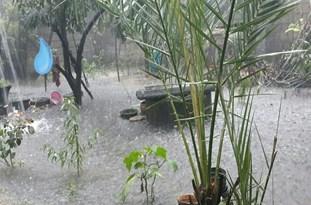 بارش باران در شرق گیلان بیشتر است/وضعیت بحرانی بارشی از عصر امروز