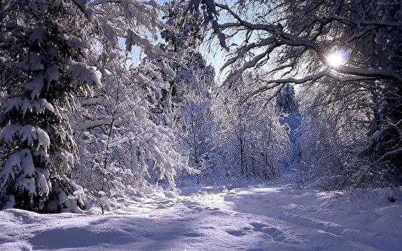 گزارش بارش برف در ماسوله ،فومن ،رشت ،لاهیجان ،املش، لنگرود،ماسال ،رودسر ،تالش ،آستارا،انزلی ،رضوانشهر،سیاهکل و شفت
