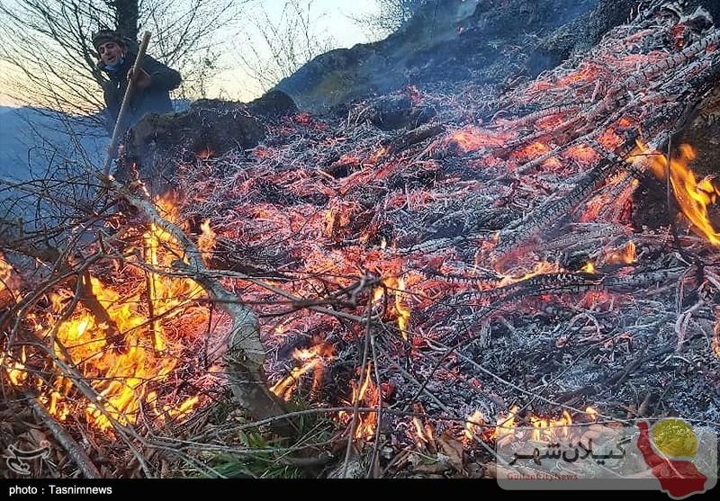 ۵۶هکتار از جنگلهای گیلان طعمه حریق شد