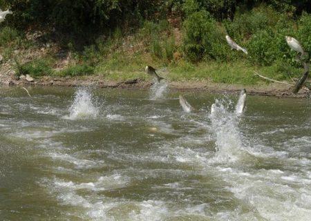 ممنوعیت برداشت شن و ماسه از رودخانههای گیلان