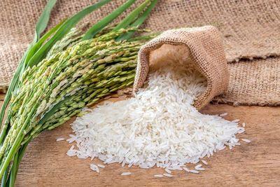 ارز دولتی به جای واردات برنج پاکستانی به مردم پرداخت شود