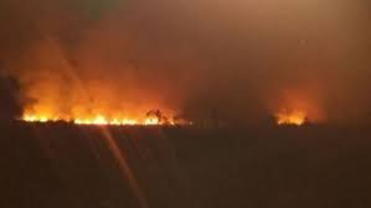 یک هکتار از تالاب امیرکلایه در آتش سوخت