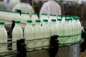 افزایش قیمت شیر دلایل مختلفی دارد