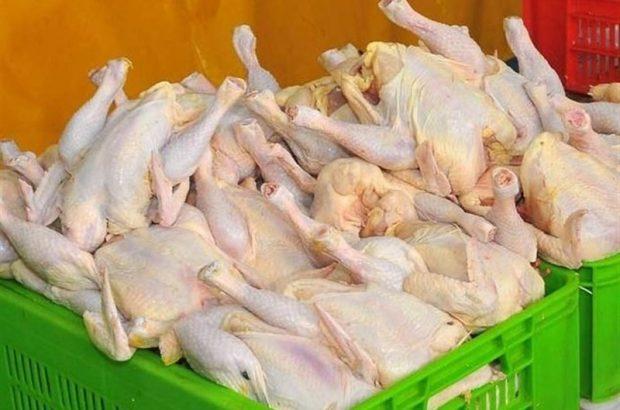 مرغ به کیلویی ۱۱ هزار تومان رسید