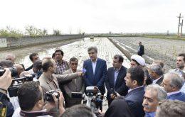 حجم مطلوب بارشها و مدیریت صحیح منابع آبی سال پربرکتی برای کشاورزان گیلان رقم خواهد زد