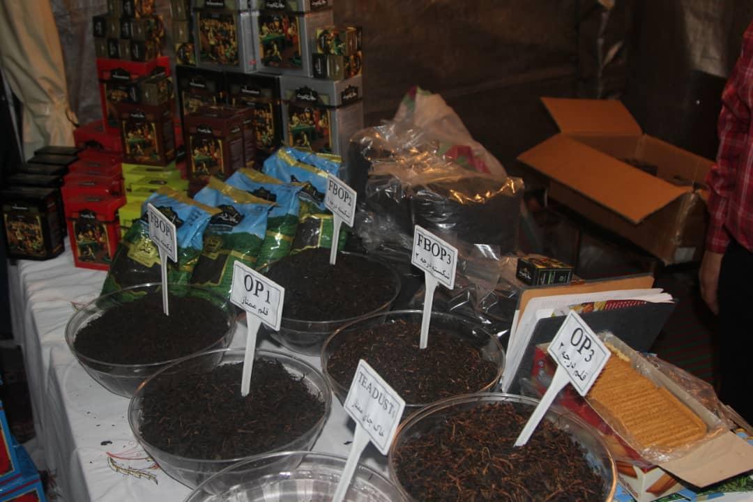 چایکاری، یک صنعت راهبردی برای گیلان است