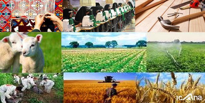 وضعیت اجرای برنامههای تولید و اشتغال از طریق حوزه کشاورزی