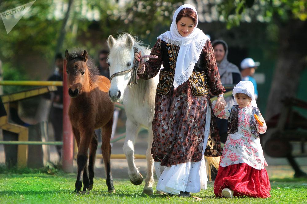اجرای برنامه جامع کشاورزی برای جلوگیری از انقراض اسب کاسپین