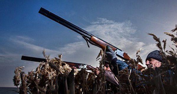فصل شکار پرندگان در استان گیلان ۳۰ بهمنماه به پایان میرسد