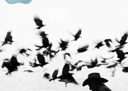 نشان افتخار جشنواره لندن برای «فکرپریشان» عکاس گیلانی