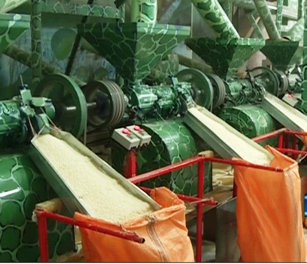 اعلام قیمت حق العمل کاری شالیکوبی ها