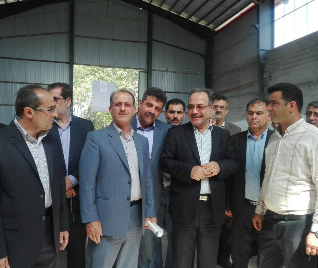 کارگاه تولیدی سبد میوه با اعتباری بالغ بر ۱۲ میلیارد ریال در هفته دولت افتتاح شد