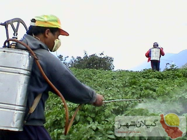 افزایش ۶ برابری قیمت کود؛ کسی نیست به داد کشاورزان برسد