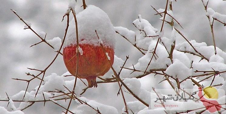 پیشبینی برف و باران در گیلان برای آخر هفته